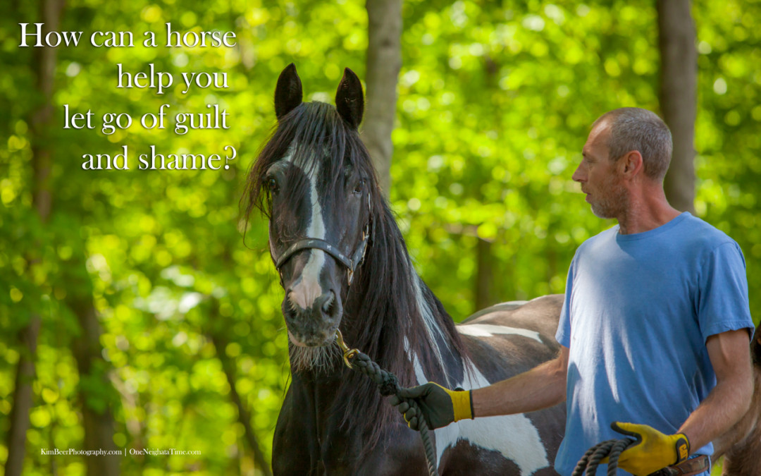 How can a horse help you let go of guilt and shame?