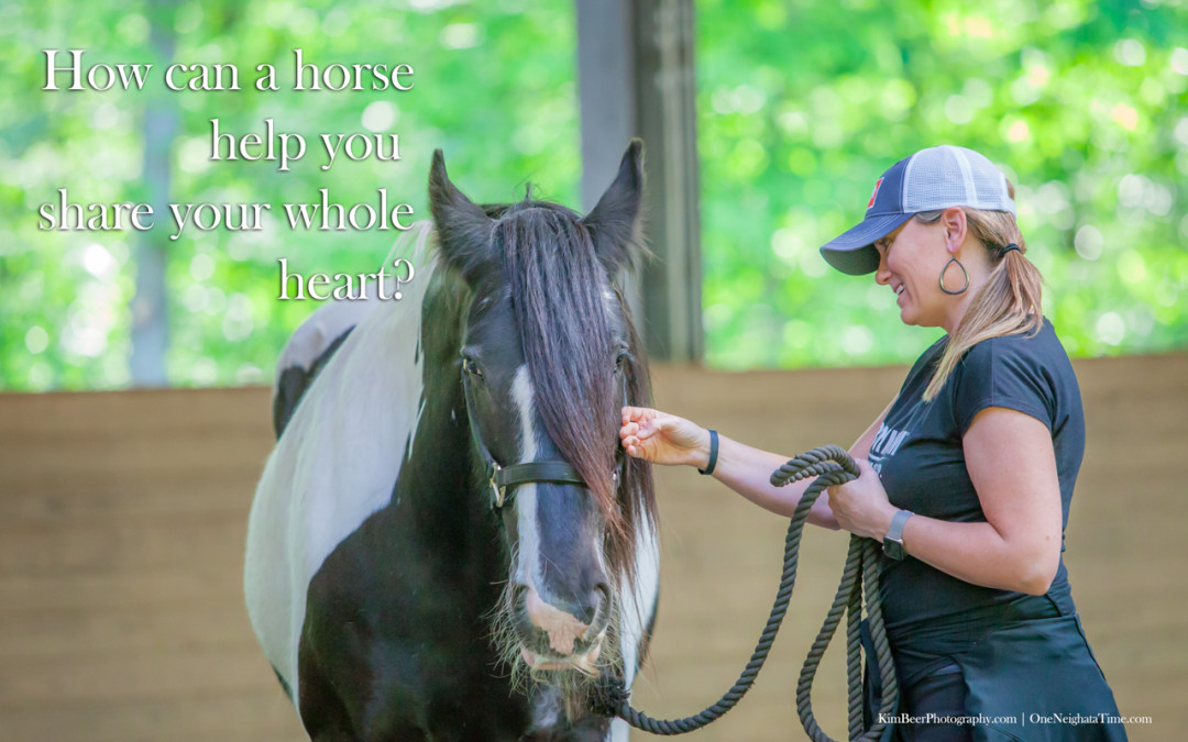 How can a horse help you share your whole heart?