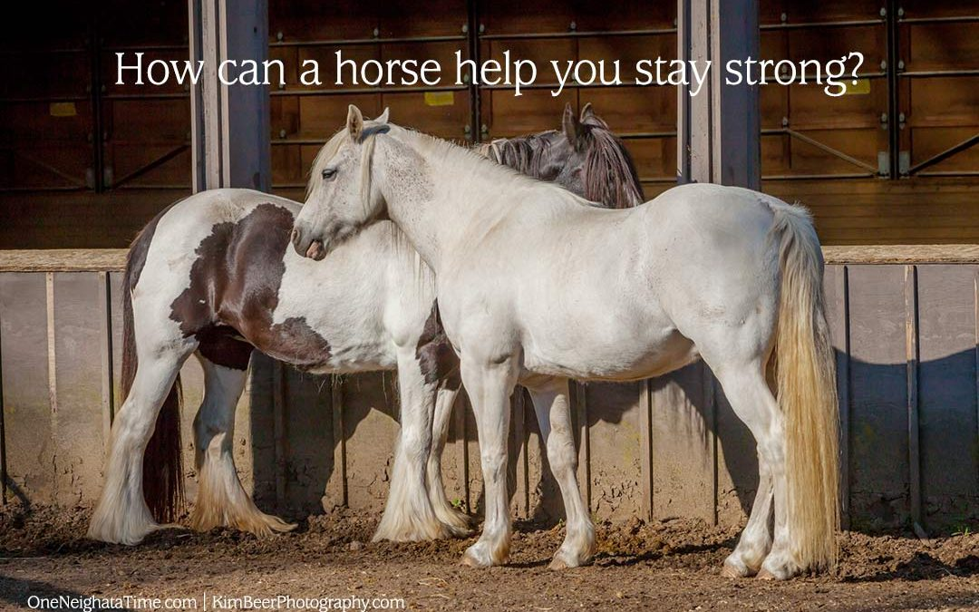 How can a horse help you stay strong?