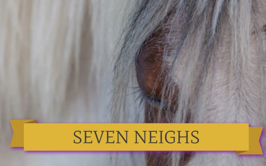 What might a horse Neigh to you about Recovery?​