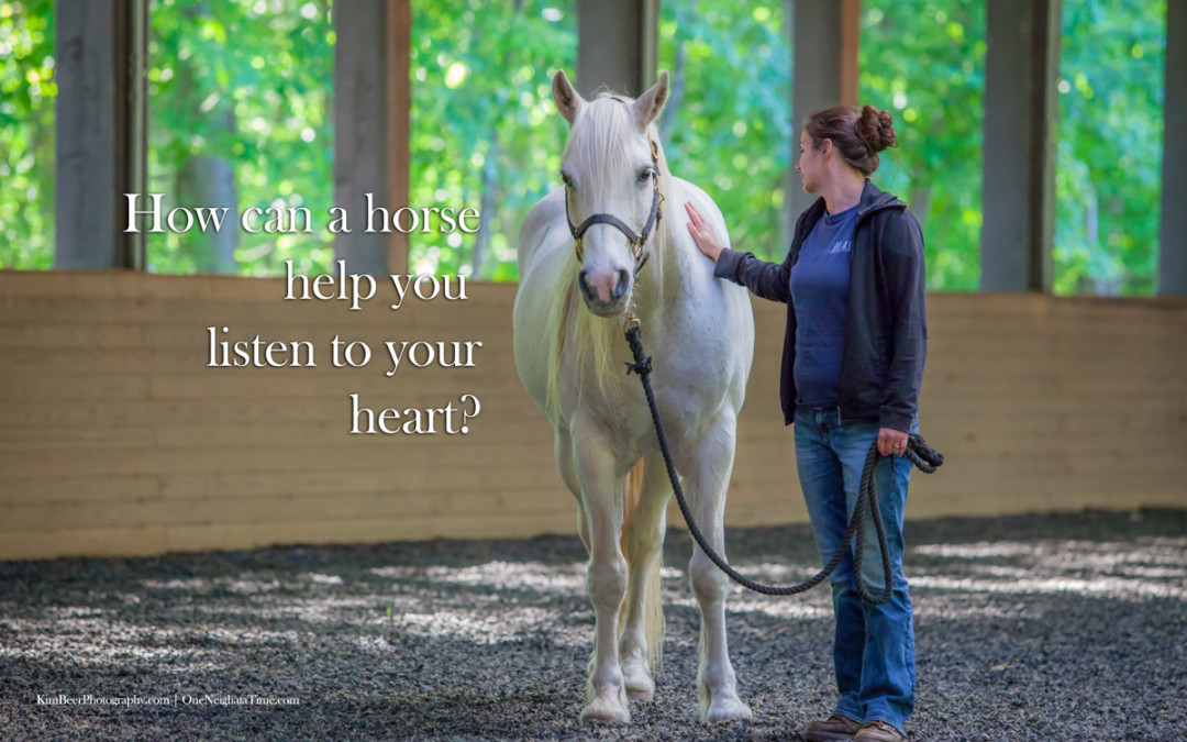 How can a horse help you listen to your heart?