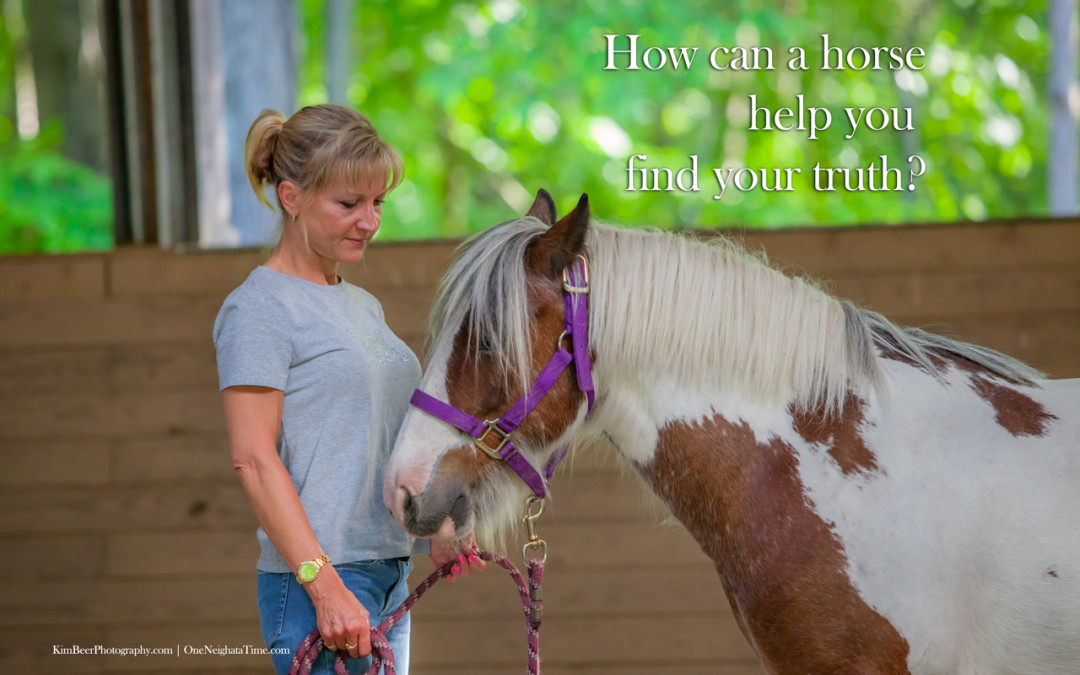 How can a horse help you find your truth?