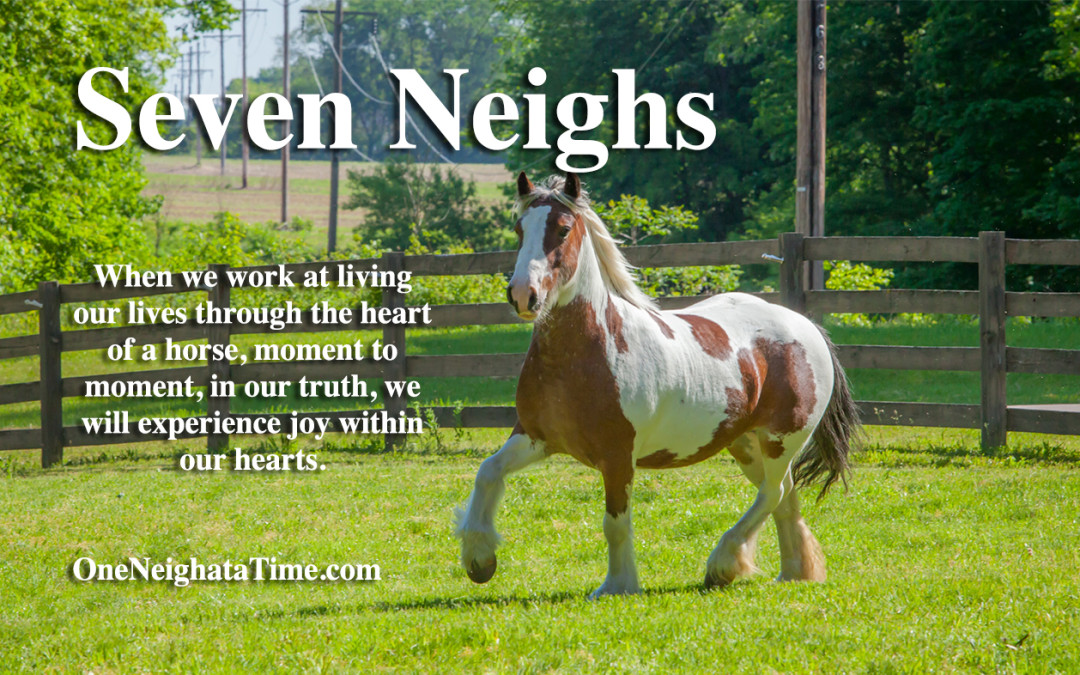 Introducing the Seven Neighs