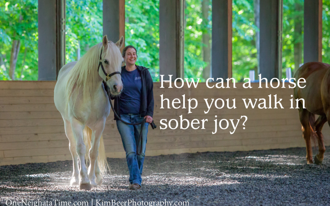 How can a horse help you walk in sober joy?