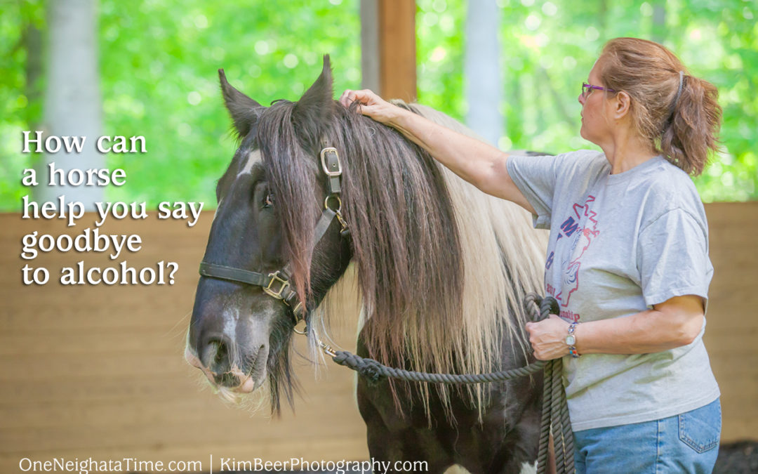How can a horse help you say goodbye to alcohol?